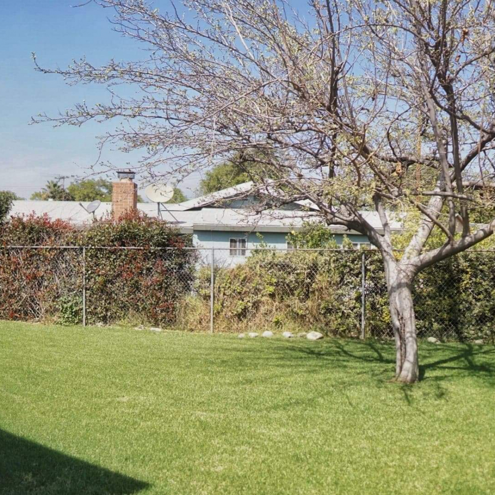 Blossom Valley Oasis | Assisted Living Home | 975 Asbury Ave, Pomona, CA 91767 | Side Yard Business View 2